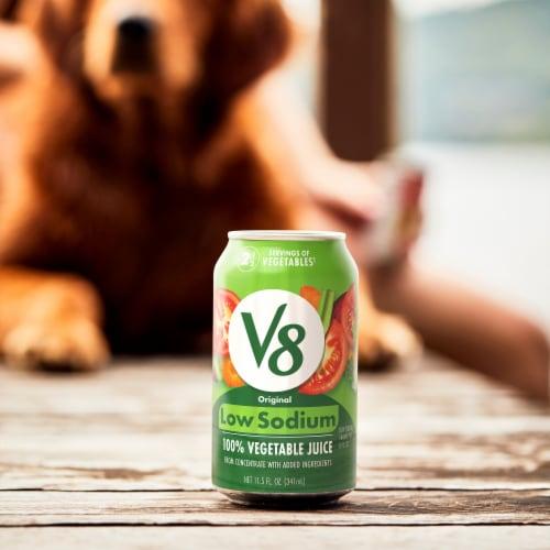 V8 Low Sodium 100% Vegetable Juice Perspective: back