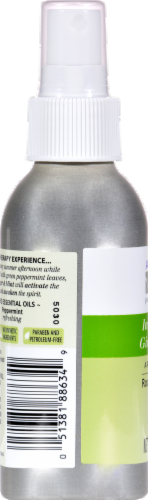 Aura Cacia Aroma Mist Ginger Mint Perspective: back