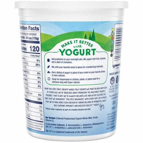 Stonyfield® Organic Probiotic Plain Whole Milk Yogurt Perspective: back