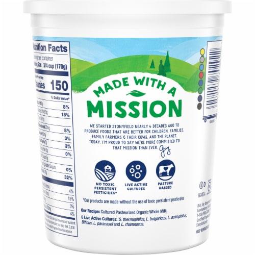 Stonyfield® Organic Plain Whole Milk Greek Yogurt Perspective: back
