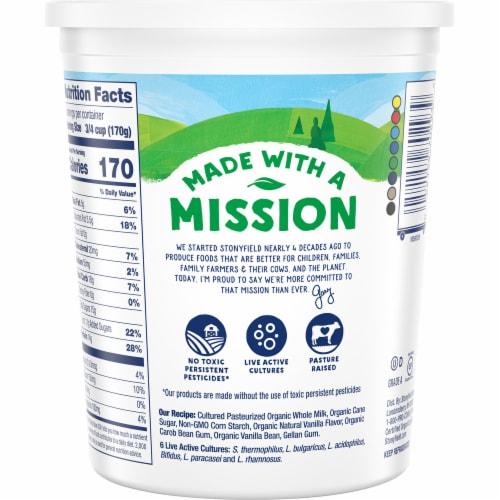 Stonyfield® Organic Vanilla Bean Whole Milk Greek Yogurt Perspective: back