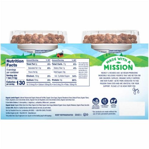 Stonyfield Organic Strawberry Lowfat Yogurt with Choco Chimps Perspective: back