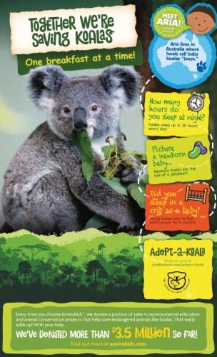 Nature's Path Organic EnviroKidz Chocolate Koala Crisp Cereal Perspective: back