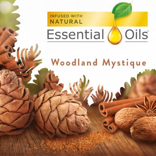 Air Wick Essential Oils Woodland Mystique Refills Perspective: back