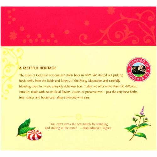 Celestial Seasonings Peppermint Herbal Tea Bags Perspective: back