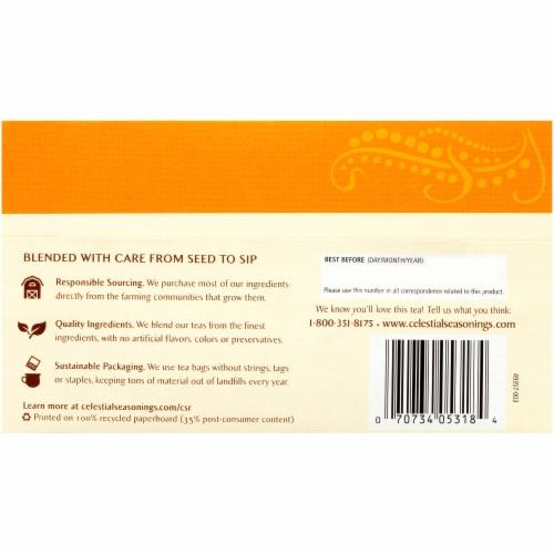 Celestial Tangerine Orange Zinger Herbal Tea Bags 20 Count Perspective: back