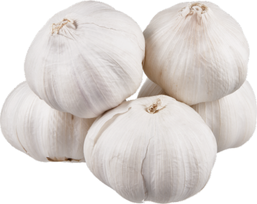 Spice World Fresh Garlic Perspective: back