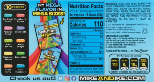 Mike & Ike Mega Mix Chewy Assorted Fruit Flavored Candies Perspective: back