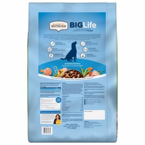 Rachael Ray Nutrish Big Life Savory Chicken Veggie & Barley Recipe Dry Dog Food Perspective: back