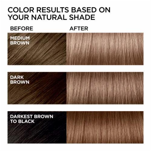 L'Oreal Paris Feria Hair Color Kit - B61 Hi-Lift Cool Brown Hair Perspective: back