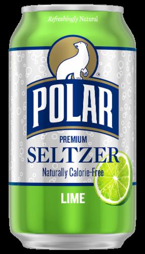 Polar Lime Seltzer Perspective: back