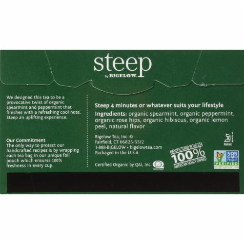 Bigelow Steep Organic Mint Herbal Tea Perspective: back