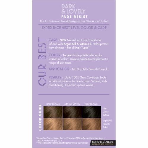 SoftSheen Carson Dark & Lovely® 378 Honey Blonde Hair Color Perspective: back