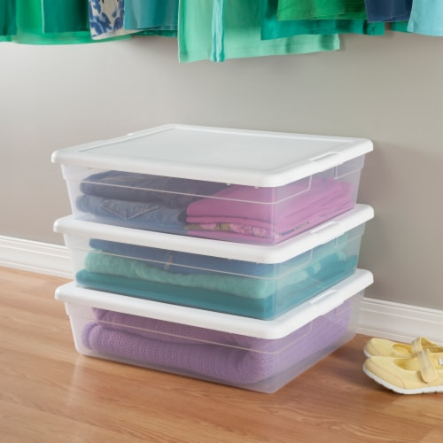 Sterilite Storage Box - Clear/White Perspective: back