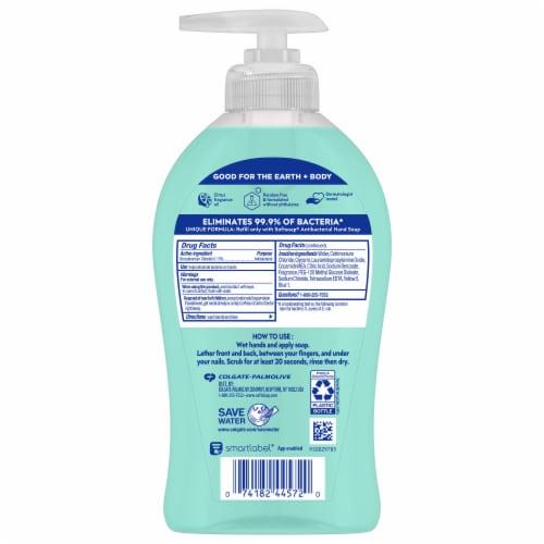 Softsoap Antibacterial Fresh Citrus Moisturizing Hand Soap Perspective: back