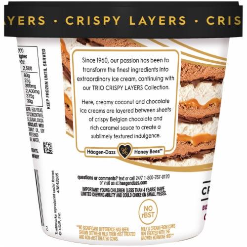 Haagen-Dazs Coconut & Chocolate Trio Crispy Layers Ice Cream Perspective: back