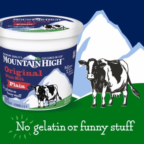 Mountain High Plain Original Whole Milk Yoghurt Perspective: back