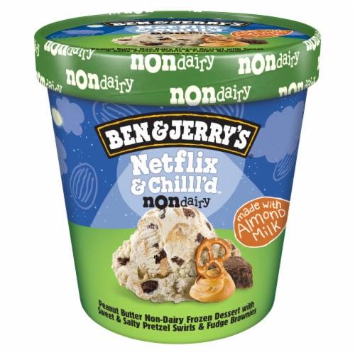 Ben & Jerry's Vegan Netflix & Chilll'd Non-Dairy Frozen Dessert Perspective: back