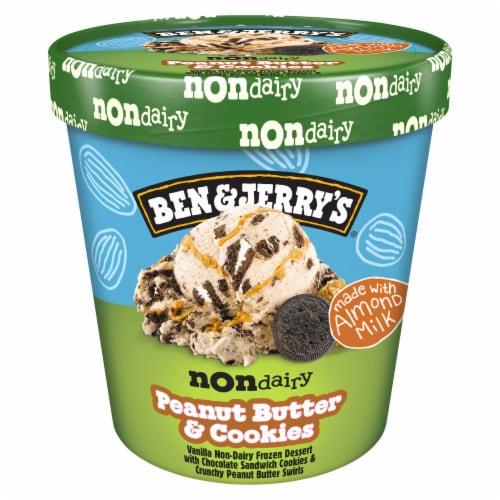 Ben & Jerry's Vegan Non-Dairy Frozen Dessert Peanut Butter & Cookies Perspective: back