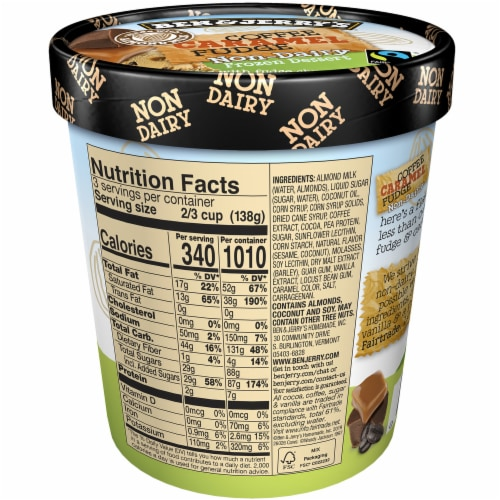 Ben & Jerry's Vegan Non-Dairy Frozen Dessert Coffee Caramel Fudge Perspective: back