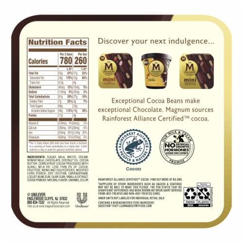 Magnum® Double Chocolate Vanilla Truffle Ice Cream Bars Perspective: back