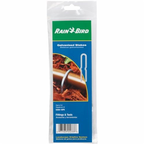 Rain Bird® Galvanized Steel Tubing Stakes Perspective: back