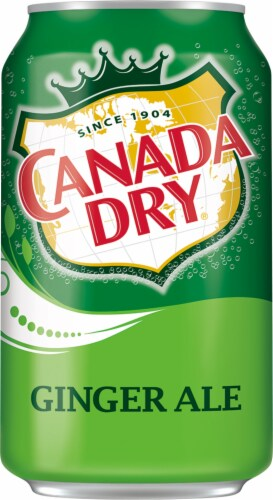 Canada Dry Ginger Ale Soda Perspective: back