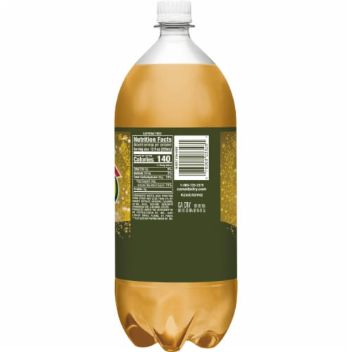 Canada Dry® Bold Ginger Ale Soda Perspective: back