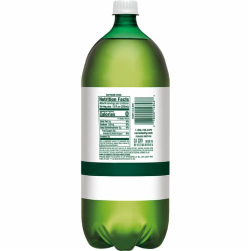 Diet Canada Dry Ginger Ale Soda Perspective: back