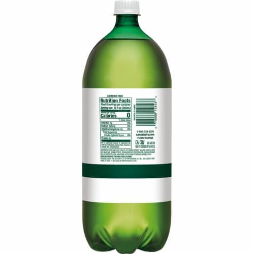 Canada Dry Zero Sugar Ginger Ale Soda Perspective: back