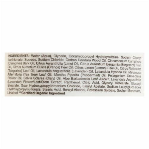 Jason Natural Products - Body Wash Himlyn Salt - 1 Each - 30 FZ Perspective: back
