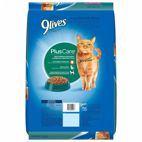 9Lives PlusCare Dry Cat Food Perspective: back