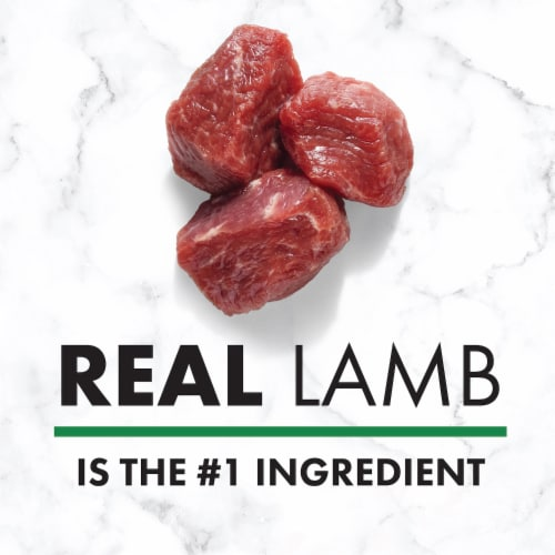 Nutro Natural Choice Lamb & Brown Rice Recipe Adult Dry Dog Food Perspective: back