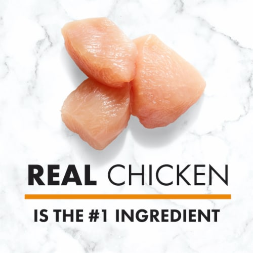 Nutro Wholesome Essentials Chicken Brown Rice & Sweet Potato Adult Dry Dog Food Perspective: back
