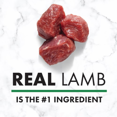 Nutro Wholesome Essentials Lamb & Rice Large Breed Adult Dry Dog Food Perspective: back
