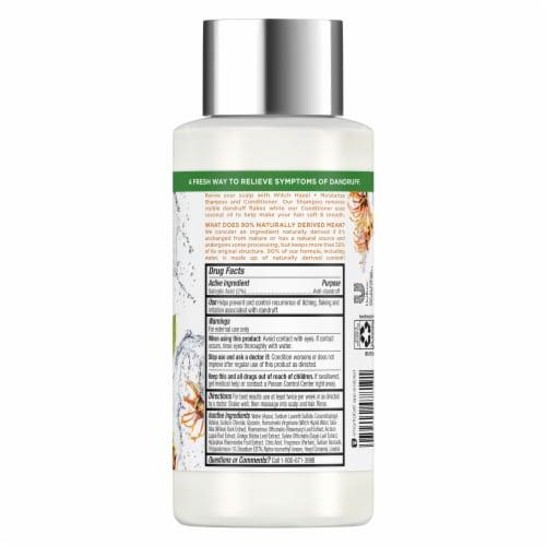 RE-fresh Silicone-Free Witch Hazel Anti-Dandruff Shampoo & Dry Scalp Treatment Perspective: back