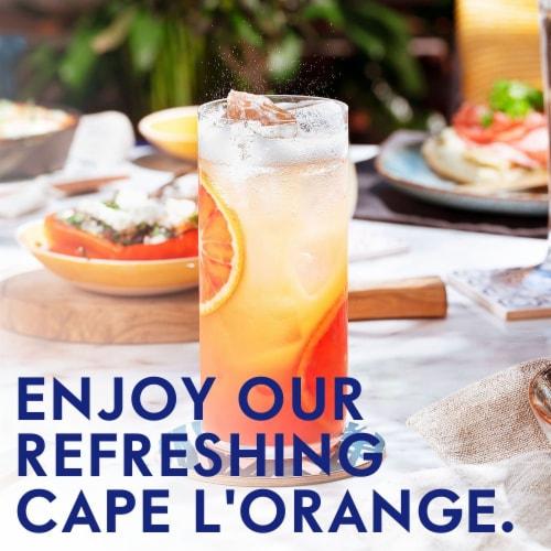 Grey Goose L'Orange Vodka Perspective: back