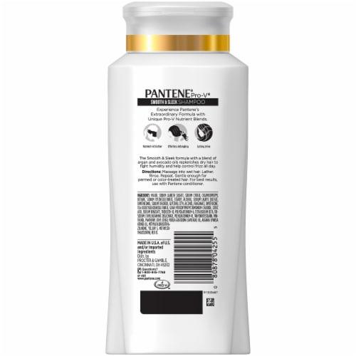 Pantene Pro-V Smooth & Sleek Shampoo Perspective: back