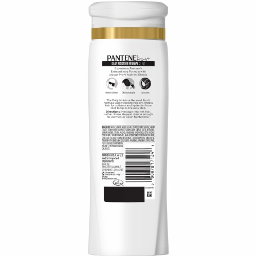 Pantene ProV 2 in 1 Daily Moisture Renewal Shampoo & Conditioner Perspective: back