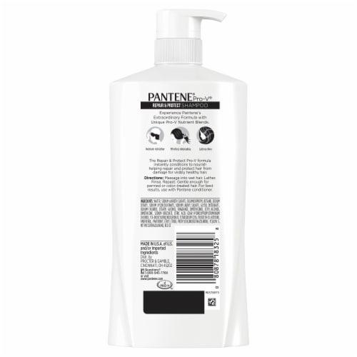 Pantene Pro-V Repair & Protect Shampoo Perspective: back