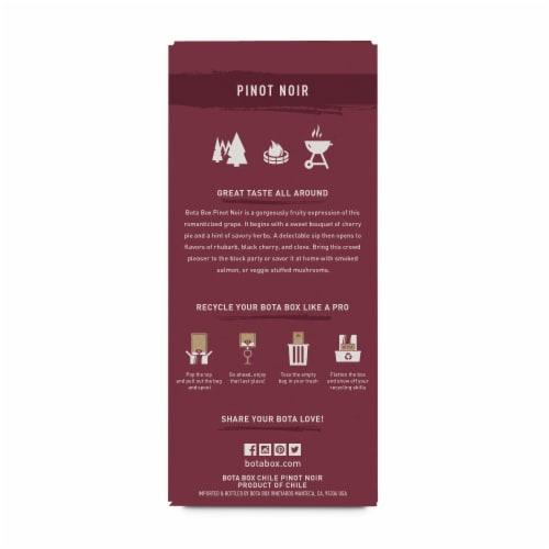 Bota Box®  Pinot Noir California Red Wine Perspective: back