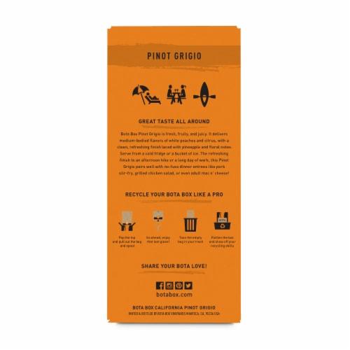 Bota Box®  Pinot Grigio California White Wine Perspective: back