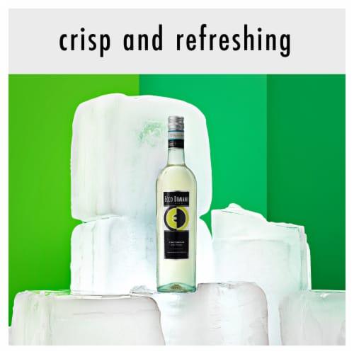Ecco Domani Pinot Grigio White Wine Perspective: back