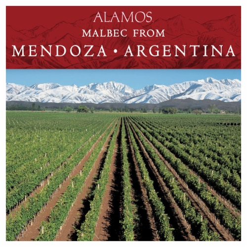 Alamos Malbec Argentina Red Wine Perspective: back