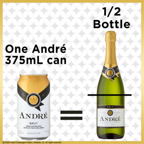 Andre Brut Bubbly Wine Single Serve 375ml Can Perspective: back