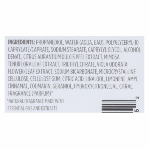 Crystal Deodorants - Deodorant Invsbl Sld Frsh Mint - 1 Each - 2.5 OZ Perspective: back