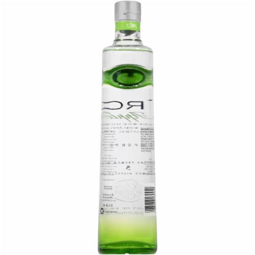 CIROC Natural Flavor Infused Apple Vodka Perspective: back