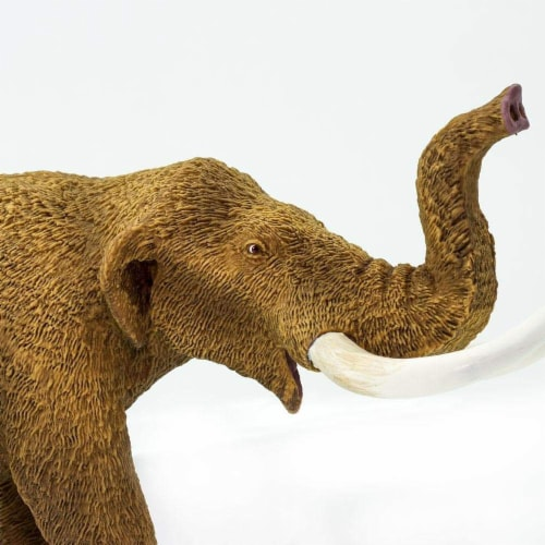 American Mastodon Toy Perspective: back