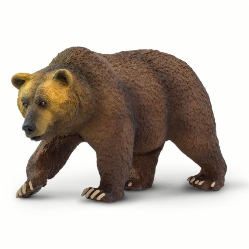 Grizzly Bear Perspective: back