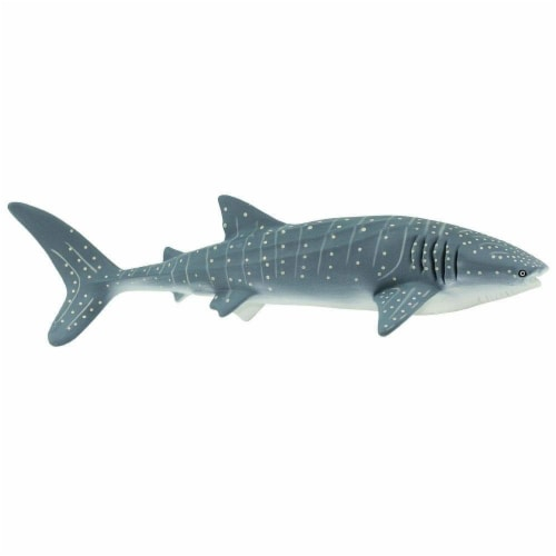 Whale Shark Toy Perspective: back